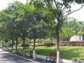 重庆市光华女子学校校园风景