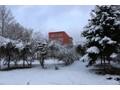 被白雪包裹的黑龙江护理高等专科学校