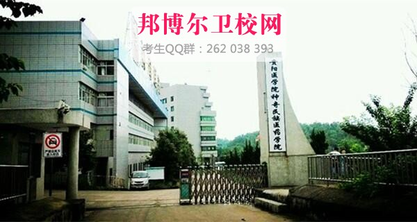 贵阳医学院神奇民族医药学院什么专业好及有哪些专业