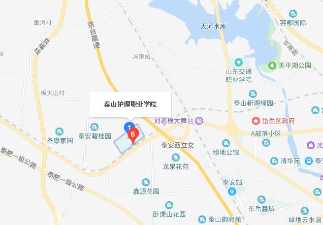 泰山护理职业学院地址在哪里