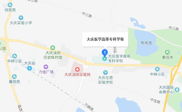大庆医学高等专科学校地址在哪里