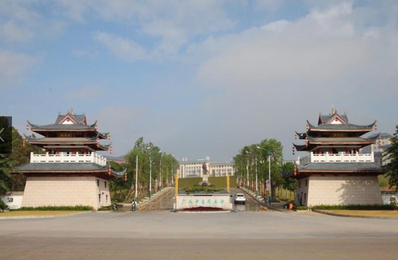 广西中医药大学2019年有哪些专业