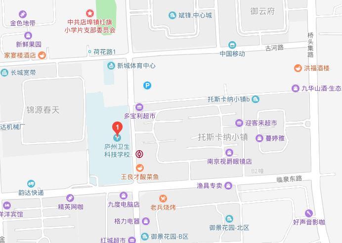 庐州卫生科技学校2019年地址在哪里
