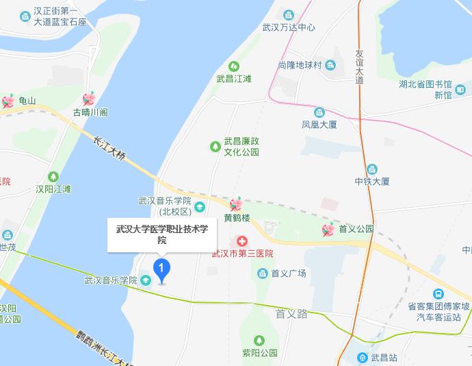 武汉大学医学职业技术学院2019年地址在哪里