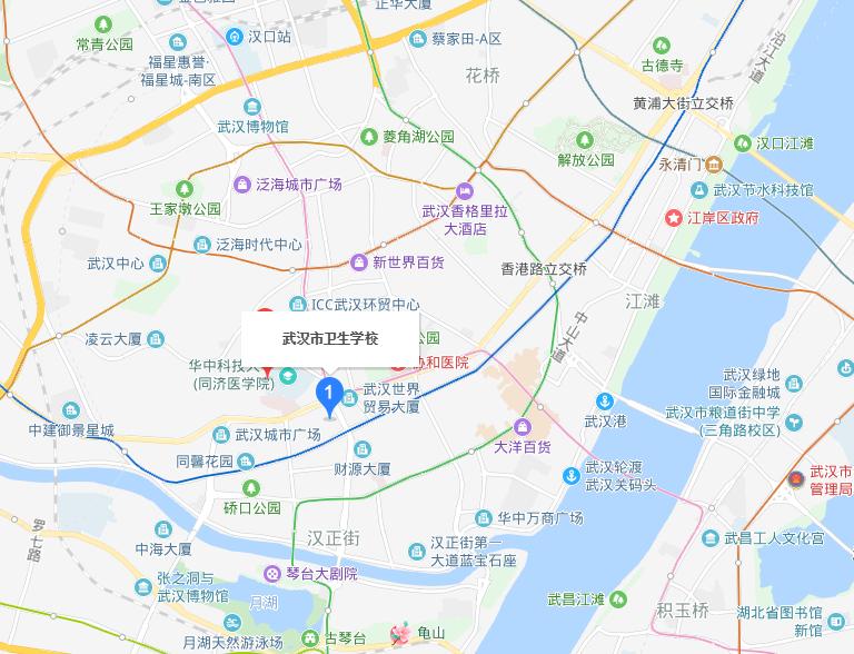 武汉市卫生学校2019年地址在哪里