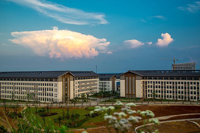 镇江高专卫生护理学院2020年有哪些专业