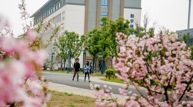 镇江高专卫生护理学院怎么样、好不好