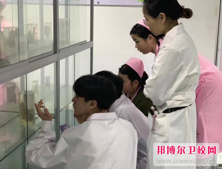 重庆的全日制卫校有哪些
