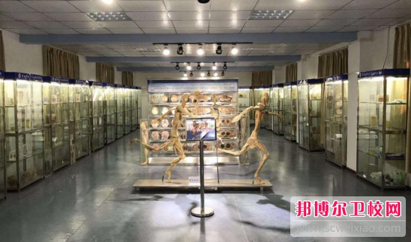 重庆的卫校2020不是应届毕业生可以吗