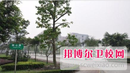 重庆的卫校毕业能当医生吗