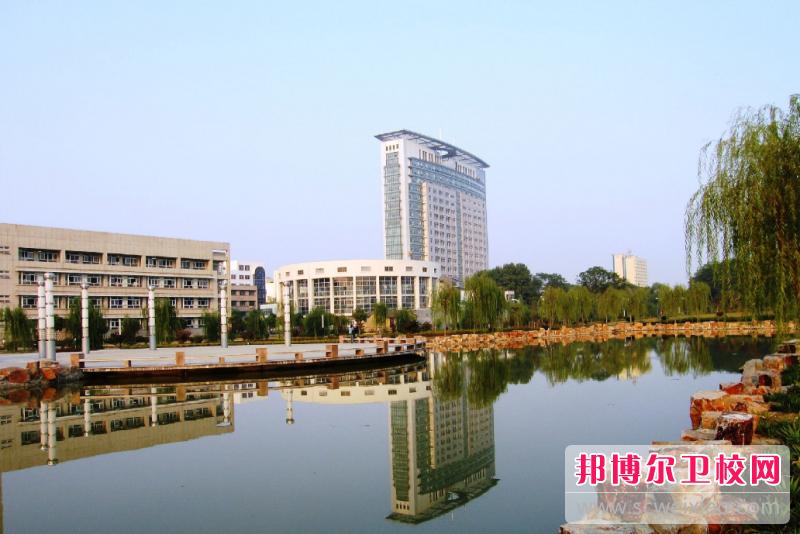 江苏省2020年卫校什么专业比较好
