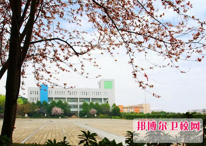 重庆2020年卫校大专招生