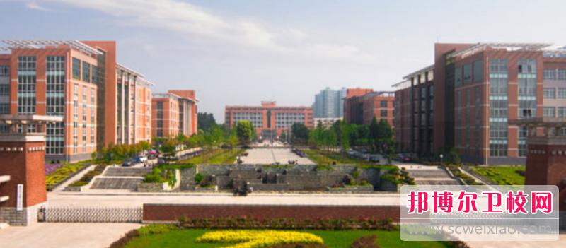 河南2020年的大专卫校有哪些