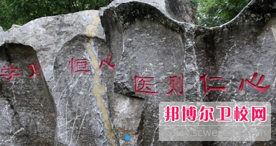 重庆2021年大专卫校有哪些