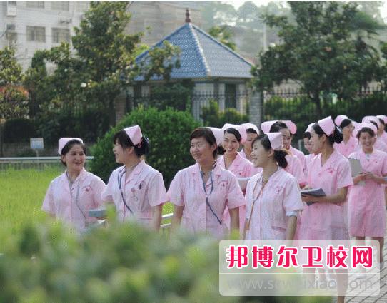 重庆沙坪坝区2020年中专卫校升本科