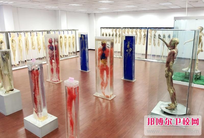 重庆沙坪坝区2021年女生读什么卫校