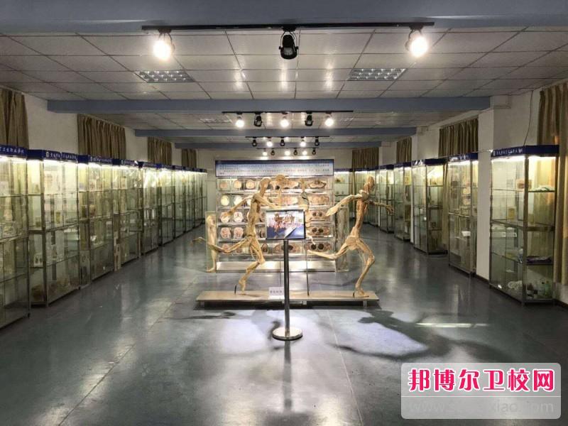 重庆沙坪坝区2021年读卫校需要什么
