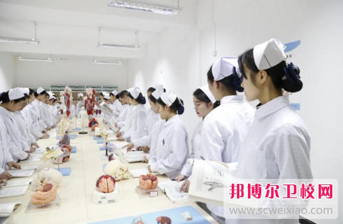 重庆沙坪坝区2021年卫校好还是大专好