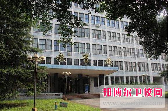 重庆沙坪坝区2022年卫校包就业吗