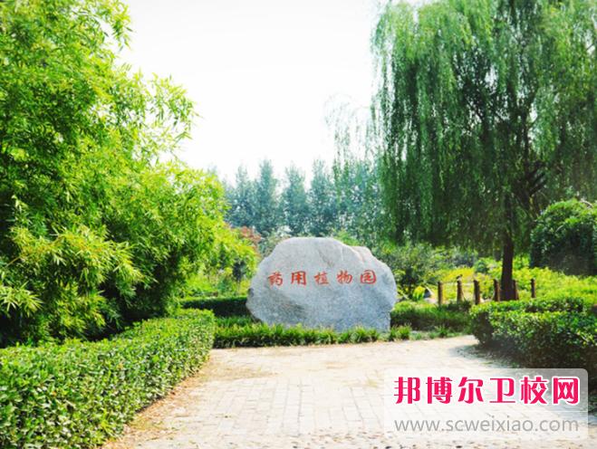 郑州2020年可以读卫校的大专学校