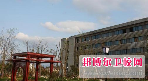 安徽2020年可以读卫校的大专学校