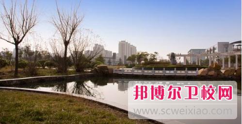 安徽2020年卫校专科学校