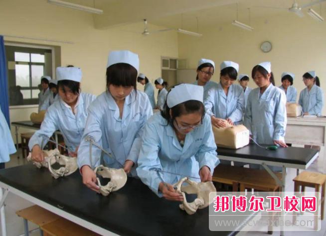重庆沙坪坝区2021年读卫校读什么专业好