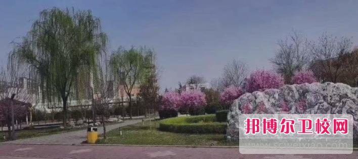 陕西医科学校网站网址