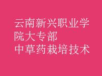 中草药栽培技术